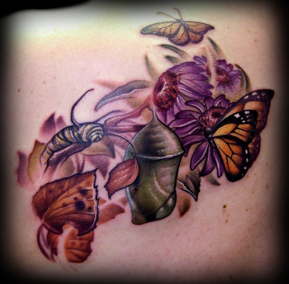 Monarch butterfly life cycle tattoo monarch struggle for Philosophy tattoos tumblr