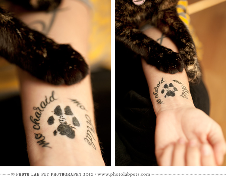 Cat Paw Print Tattoo In Left Hand For Women Tattoomagz