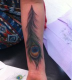 Awesome Peacock Feather Tattoo Design on Inner Arm