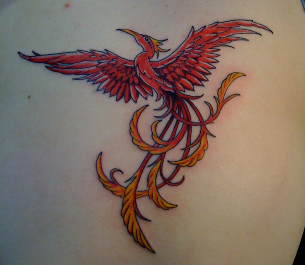 phoenix tattoo for men phoenix tattoos. Black Bedroom Furniture Sets. Home Design Ideas