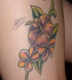 Plumeria Flower Tattoo Design