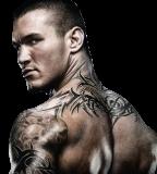 randy orton tattoo sleeves randy orton tattoos sleeves up close 75367 ...