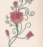 Rose Vine With Pastels Tattoo Pictures