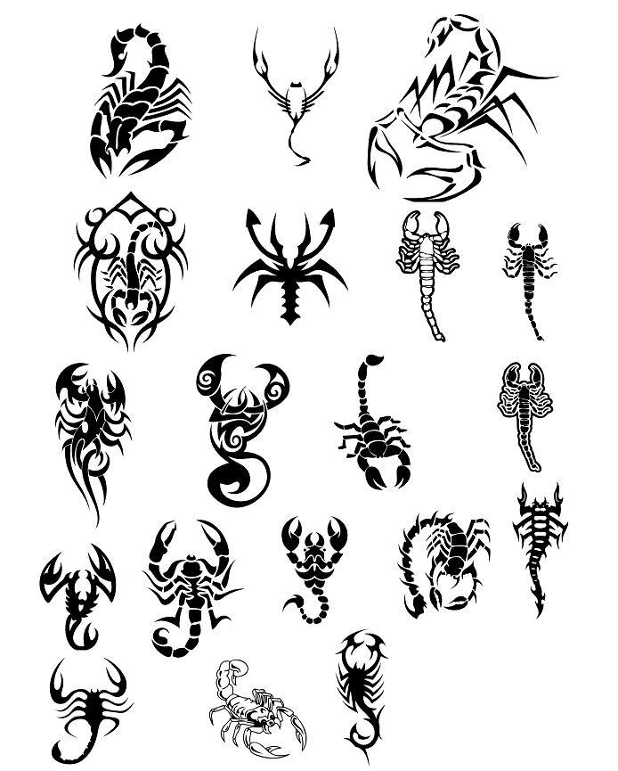 Tribal Scorpion Tattoo Designs