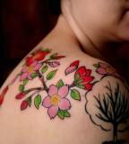 Cherry Blossom Upper Shoulder Tattoo