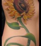 Beautiful Sunflower Tattoo Design on Rib for Girls