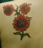 Cute Sunflowers Tattoo Design On Shoulder