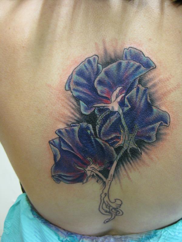 Covering tattoo works purple sweet pea flower tattoo for Sweet pea tattoo