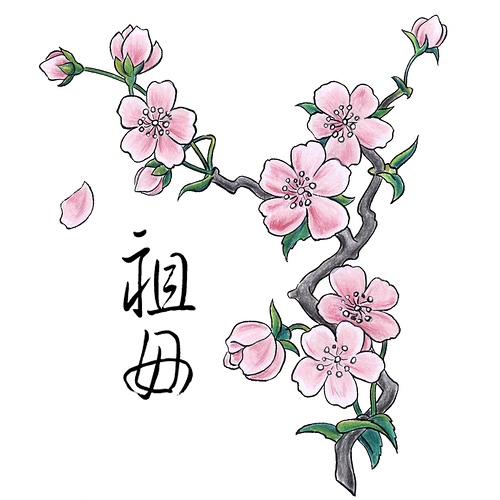 traditional chinese drawing cherry blossom tattoo design tattoomagz