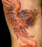 Tattoo Design of Red Fiery Phoenix Tattoos for Men's Rib