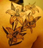 Cool Tattoo Tiger Lily on Back Shoulder