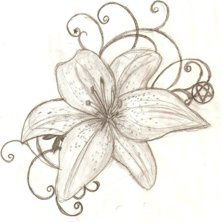 Lily Tattoo Designs