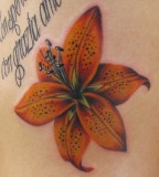 Beautiful Flower Tattoos Tiger Lily On The Ribs