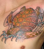 Turtle Tattoos Pictures Design