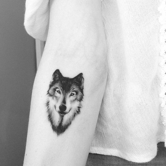 wolf-tattoo-by-adrian-bascur