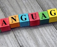 A Beginner's Guide on Learning a New Language