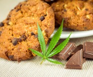 A Beginner's Guide to Taking CBD Edibles: Everything to Know