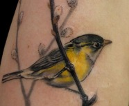 Birds tattoos