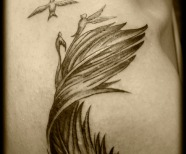 Feather Turning Into Birds Tattoo