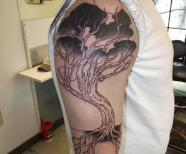 Gorgeous black trees tattoos