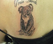 koala bear tattoos