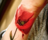Lovely tulips tattoos