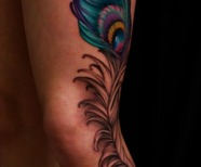Peacock Feather Tattoo Meaning