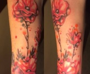Poppies tattoos on arms
