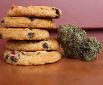 A Beginner's Guide To The Various Types Of Cannabis Edibles