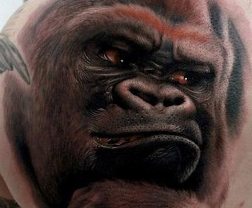 Animals tattoo