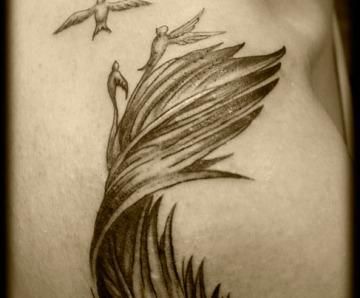Feather Turning Into Birds Tattoo