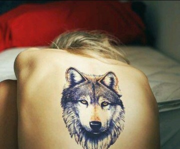 Wolfs tattoos on arms