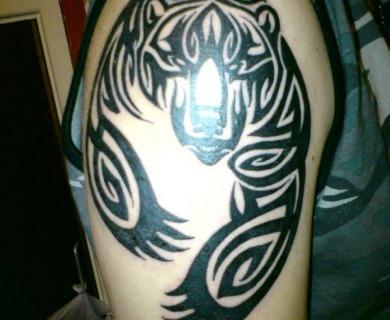 Bears tattoos on shoulders