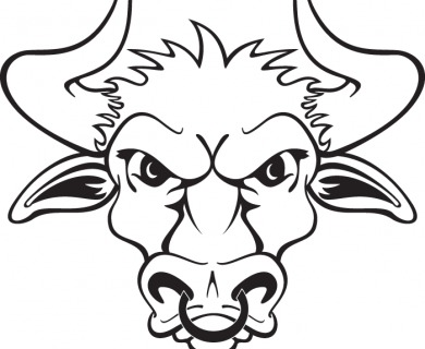Bull Head Tattoo Designs
