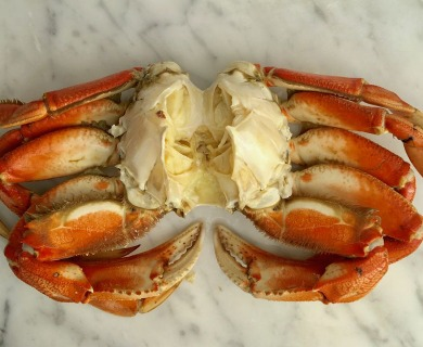 How to buy and crack Dungeness crab(step by step)