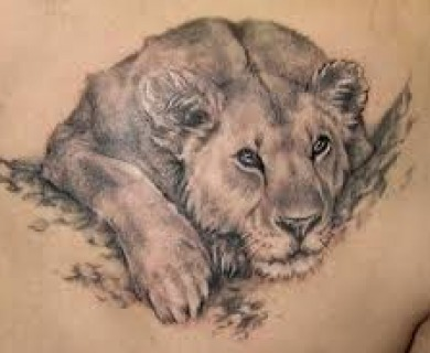 King of animals tattoos