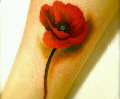 Orange and red poppies tattoos