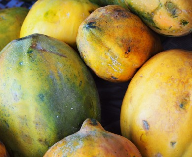 Papaya Benefits and What Makes in a Wonder Fruit