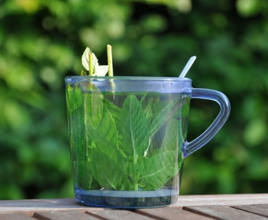 Peppermint Tea Benefits: Your Guide to Good Health