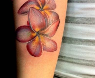 Plumerias tattoos