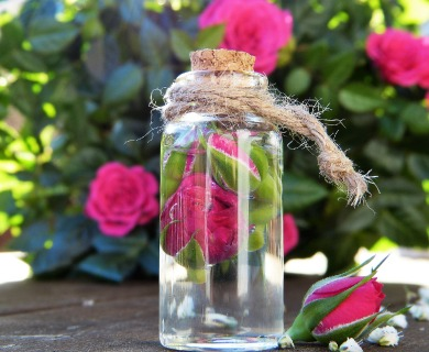 Rose Water Benefits for Skin, Hair, and Eyes