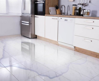 Water Leaking From Fridge | What's The Solution?