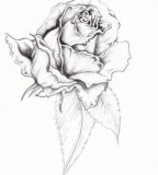 flower designs for tattoos rose