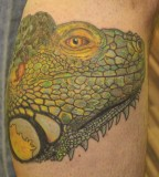 Chameleon-tattoo