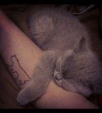 Cute-Cat-Cat-Tattoo