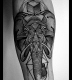 Graphic-elephant