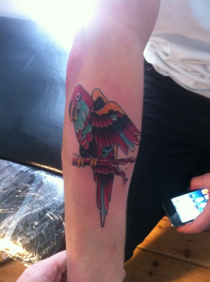 Parrot-arm-tattoo