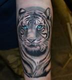 Realistic-Tiger-Tattoo