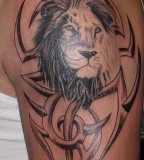 tattoo picture gallery lion in tribal