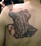 anatomical tattoo anatomical neck tattoo